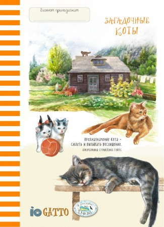 Блокнот Загадочные коты Рыжая полоска 16+