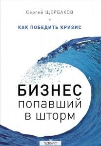 Бизнес попавший в шторм Как победить кризис Книга Щербаков