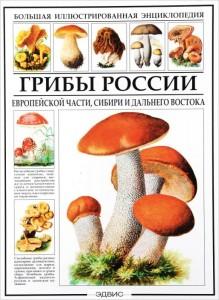 Большая иллюстрированная энциклопедия Грибы России Книга Афонькин