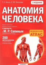 Анатомия человека Книга Билич Габриэль 12+