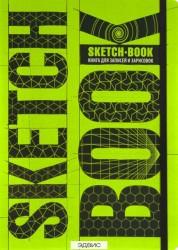Sketchbook книга для записей и зарисовок Визуальный экспресс курс Книга 12+